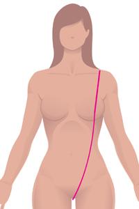 f-front-torso.jpg