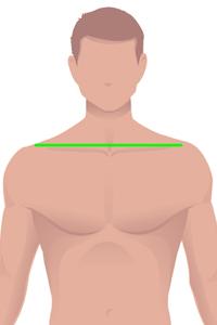 m-shoulder.jpg